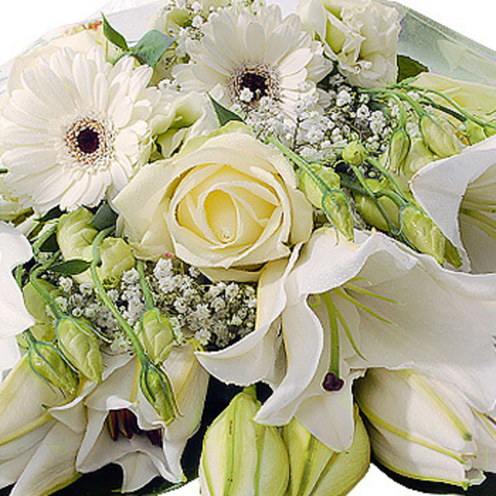 White Gift Wrap  flowers