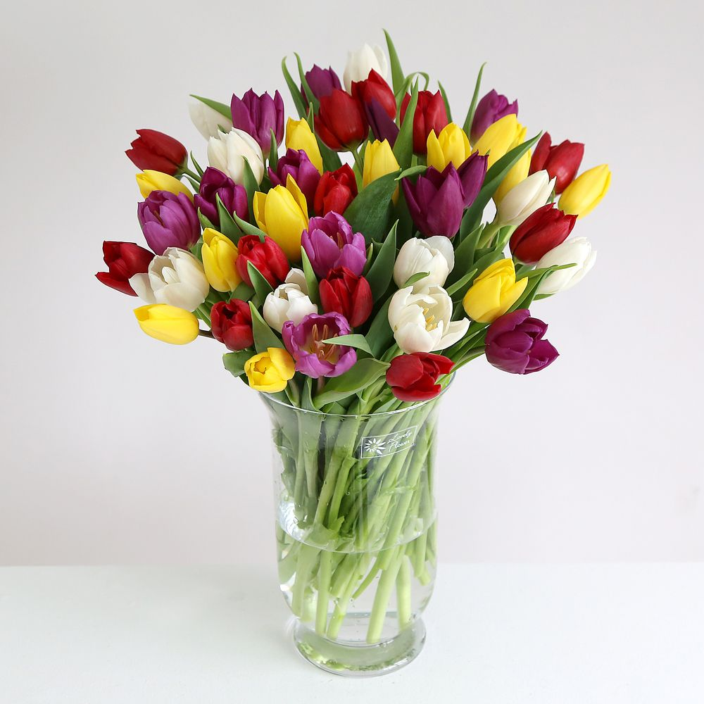 Image of 30 Mixed Tulips - 50% Extra Free - flowers