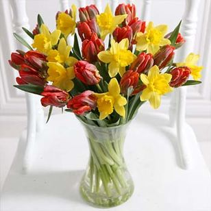 Parrot Tulips and Daffodils with Vase